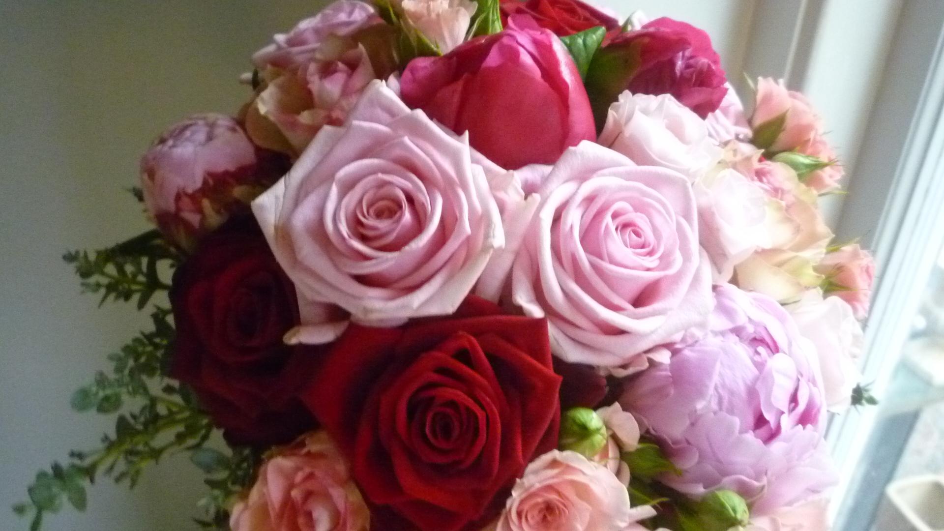 Br 246 Llopsblommor 013 Bara Blommor